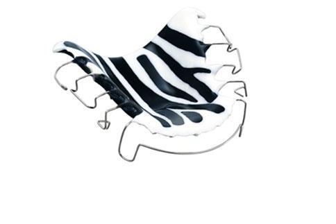 zahnspange zebra